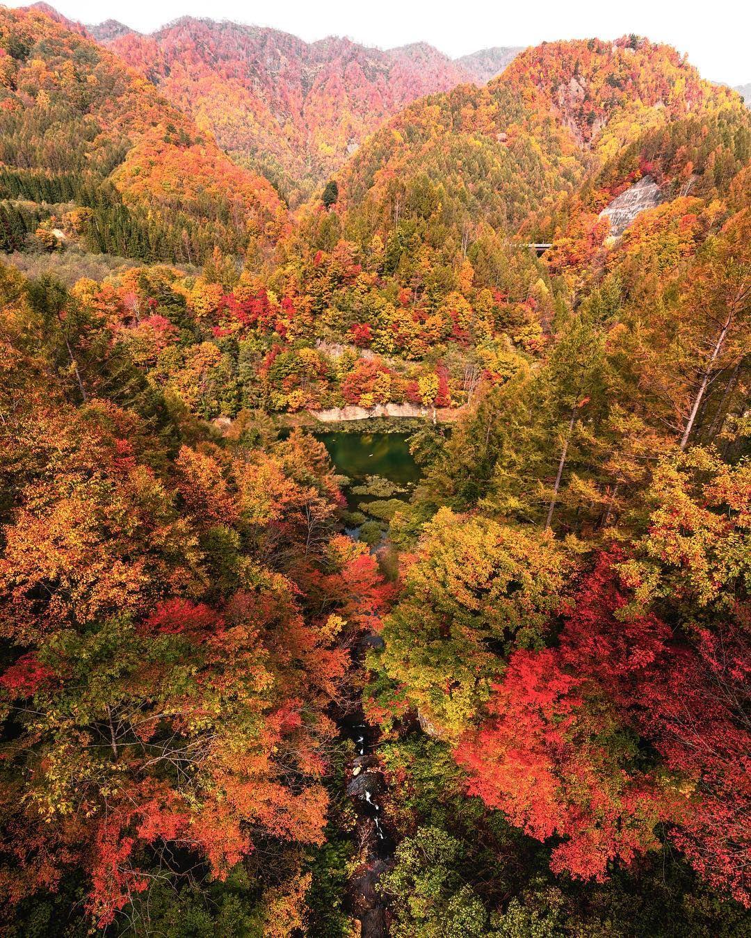 Colorful Autumn In Japan Landscape Photography By Daisuke Uematsu Beautiful Photography Nature Fall Photography Nature Landscape Photography