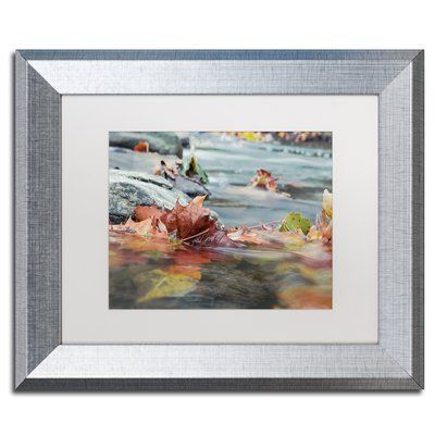 "Trademark Global 'Maple Creek' by Jason Shaffer Framed Photographic Print Matte Color: White, Size: 16"" H x 20"" W x 0.5"" D"