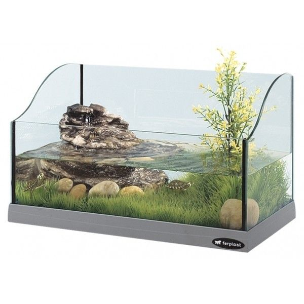 Bac tortue turtle tank for Aquarium tortue