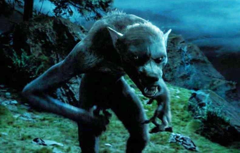 Lupin As The Werewolf Prisoner Of Azkaban Azkaban Werewolf