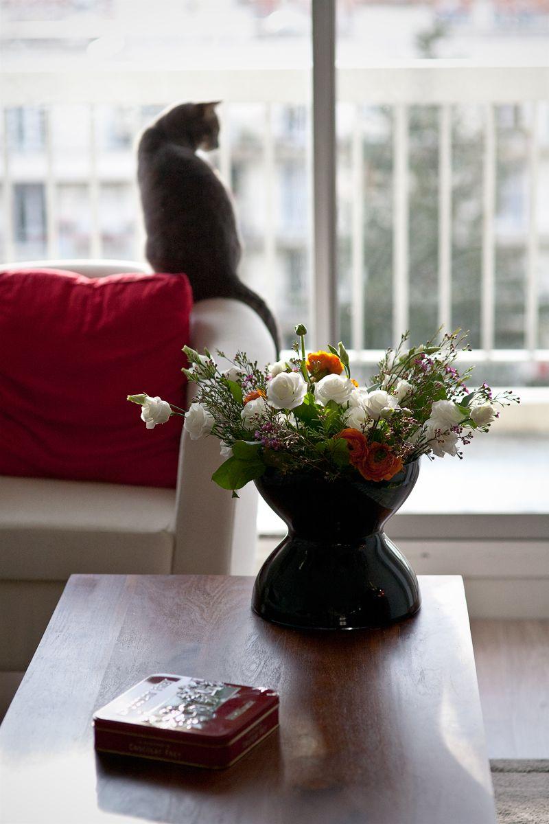 Flowers Pretty little, Flowers, Pretty