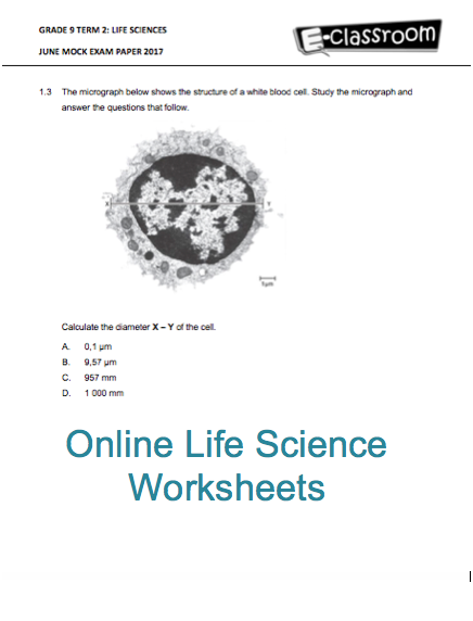 grade 9 online life science worksheets for more visit www e school. Black Bedroom Furniture Sets. Home Design Ideas
