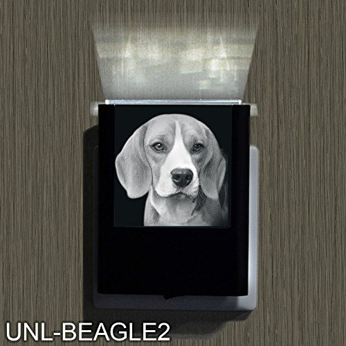 Beagle 2-2 >>> Click image to review more details. (This is an affiliate link and I receive a commission for the sales)