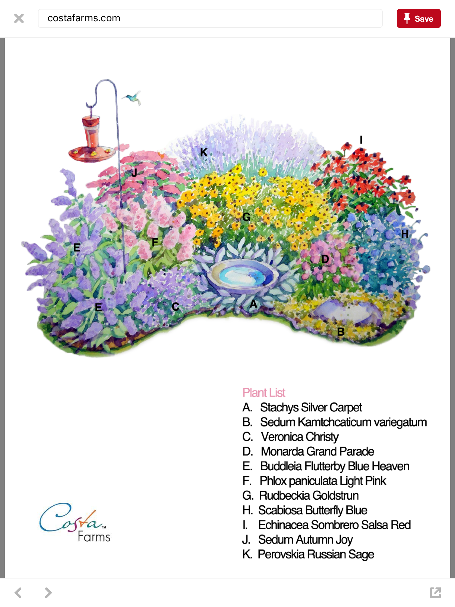 Pin By Sa Design On Flower Bed Perennial Garden Plans Flower Garden Plans Flower Garden Design
