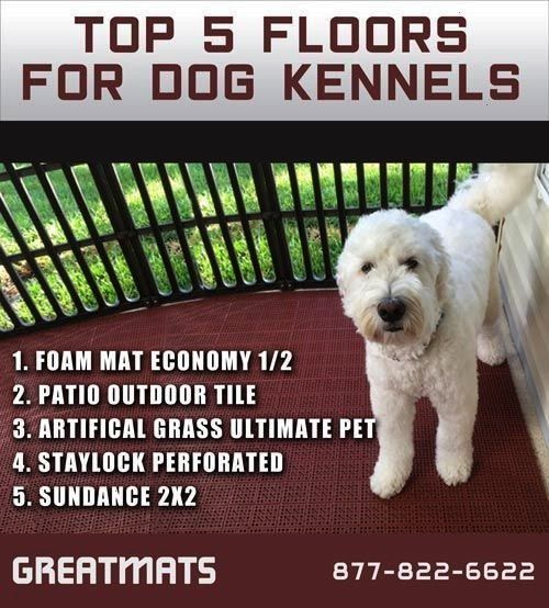 Pic Excellent Pics you can go to this web site for additional new pic outdoor kennel Tips A secure place for your dog A dog kennel is a great decision to offer your dogs...