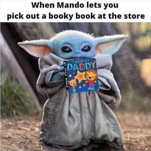Pin By Winterwings Rm On Star Wars In 2020 Funny Star Wars Memes Star Wars Memes Yoda Meme