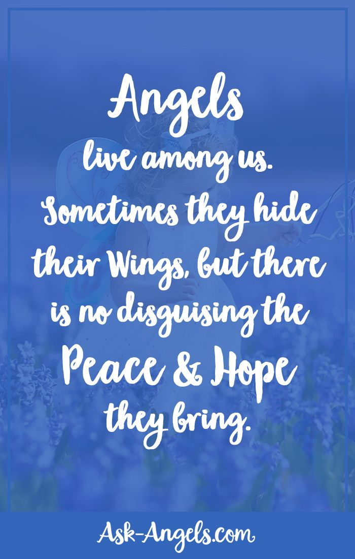 Angels Live Among Us Sometimes They Hide Their Wings But There Is No Disguising The Peace And Hope Quotes Inspirational Positive Spirit Guides Angelic Realm
