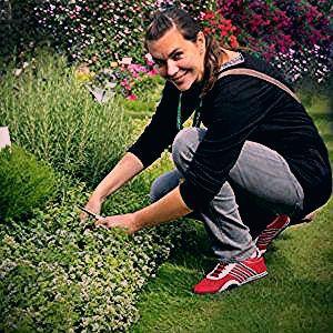 Schnelle saure Einlegegurken - so schnell kann lecker sein | Rezepte aus dem Garten - grüneliebe