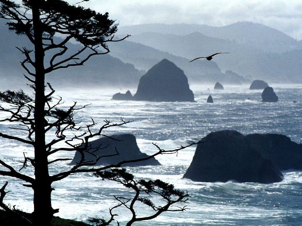 Cannon Beach Oregon In The Movie Goonies Ship Came Out Of Rock Town Is Worth Visiting It A Lovely