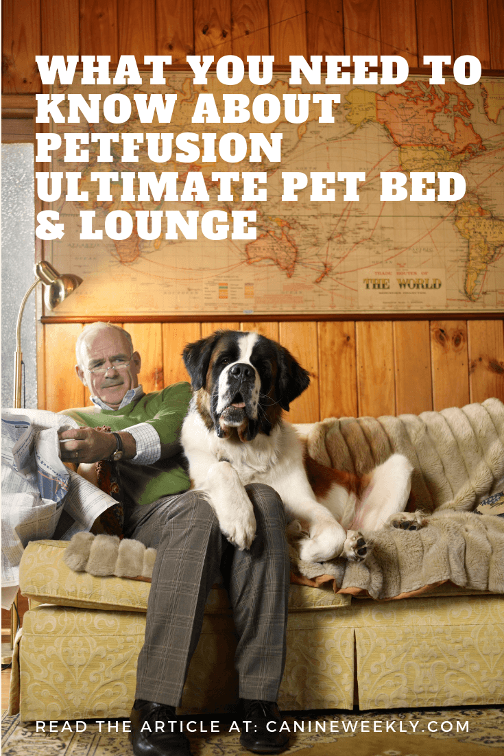 PetFusion Ultimate Dog Bed Review Canine Weekly Cool