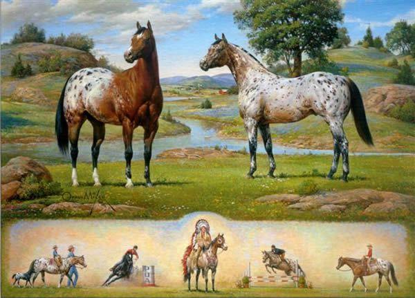 Horse//Horses//Equestrian Art Print//Poster//Appaloosa Pony 17x22