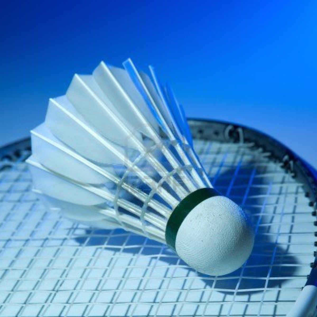 Play Badminton You Said You Know How To Play It Jeux Raquettes Fitness