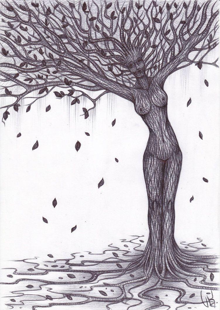 картинки рисунок дерева и человека остались без внимания