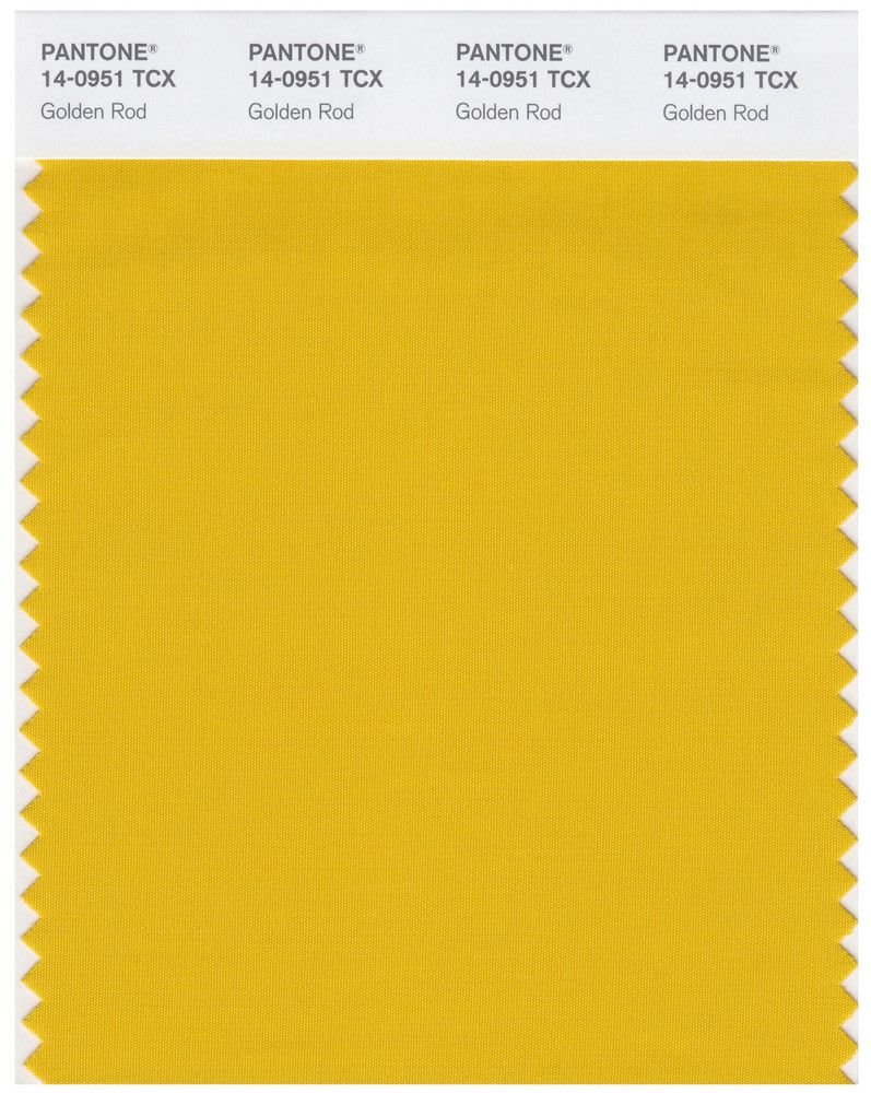 WGSN Color Trend Report 2020, Color Palette Predictions | Colour