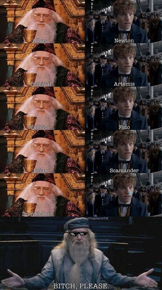 100 Memes De Harry Potter Tan Magicos Que Te Mataran De Risa Harry Potter Jokes Harry Potter Funny Harry Potter Memes