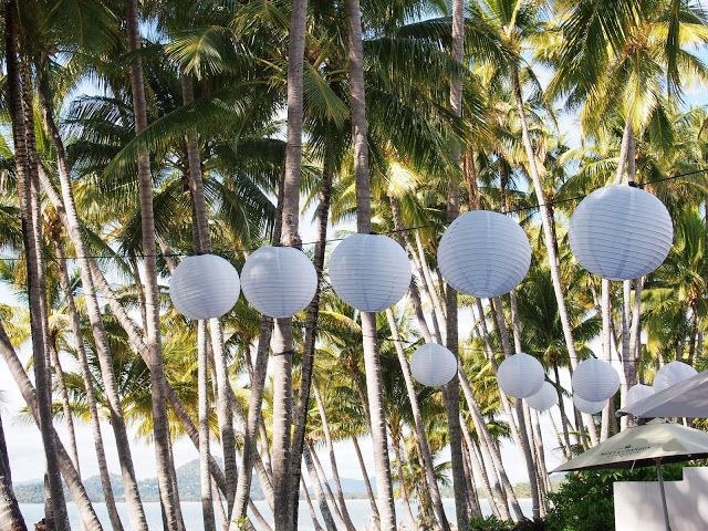 The Enchanting Forest White lanterns, Pretty places