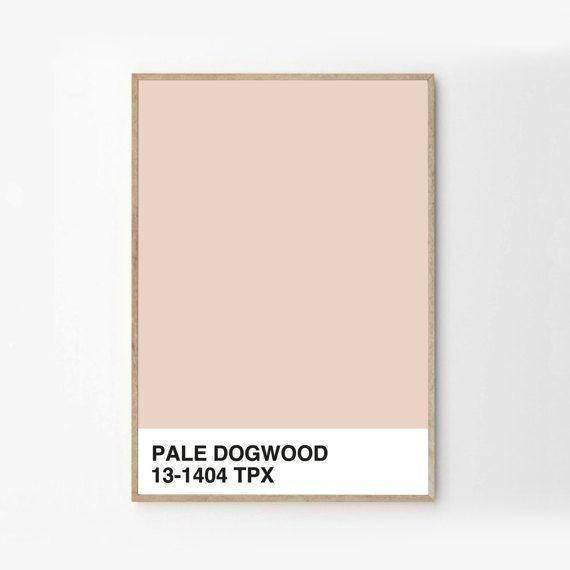 Pale Dogwood Pantone Print - Modern - Minimal Wall Art - Art & Collectibles - Digital Prints - Pink Decor - Colour Series 2017 - Blush Art