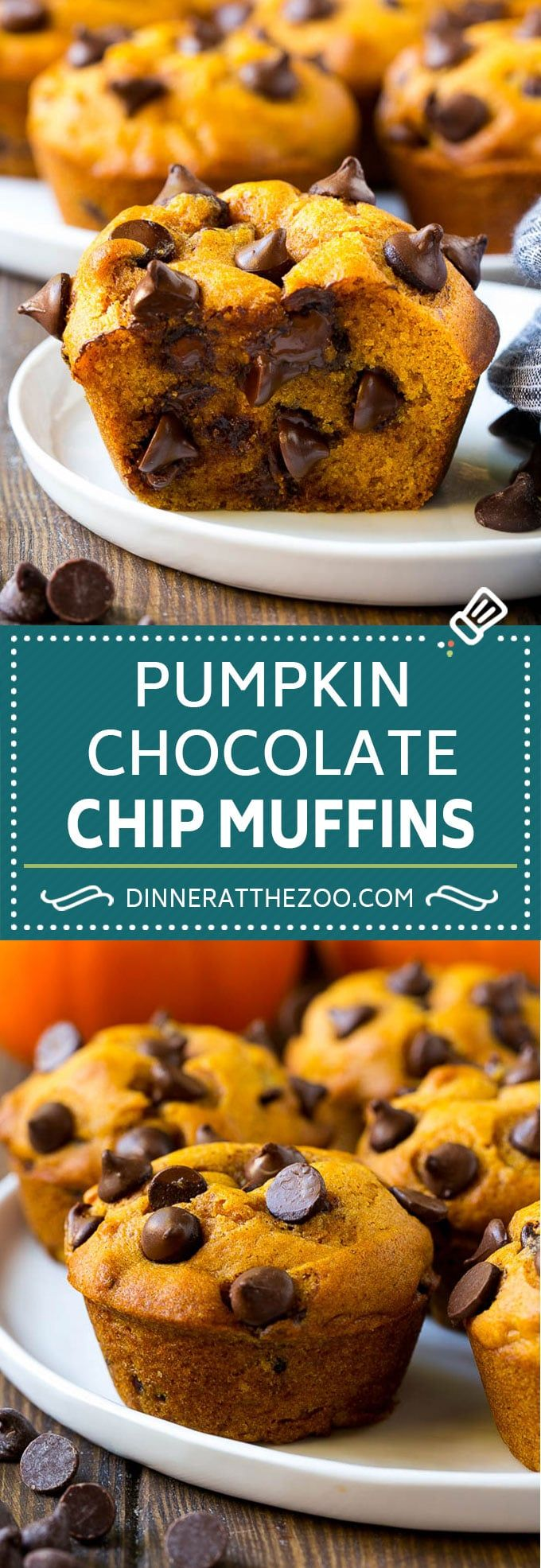 Pumpkin Chocolate Chip Muffins Recipe   Pumpkin Muffins   Chocolate Pumpkin Muffins #muffins #pumpkin #fall #chocolate #dessert #snack #dinneratthezoo #pumpkinmuffins