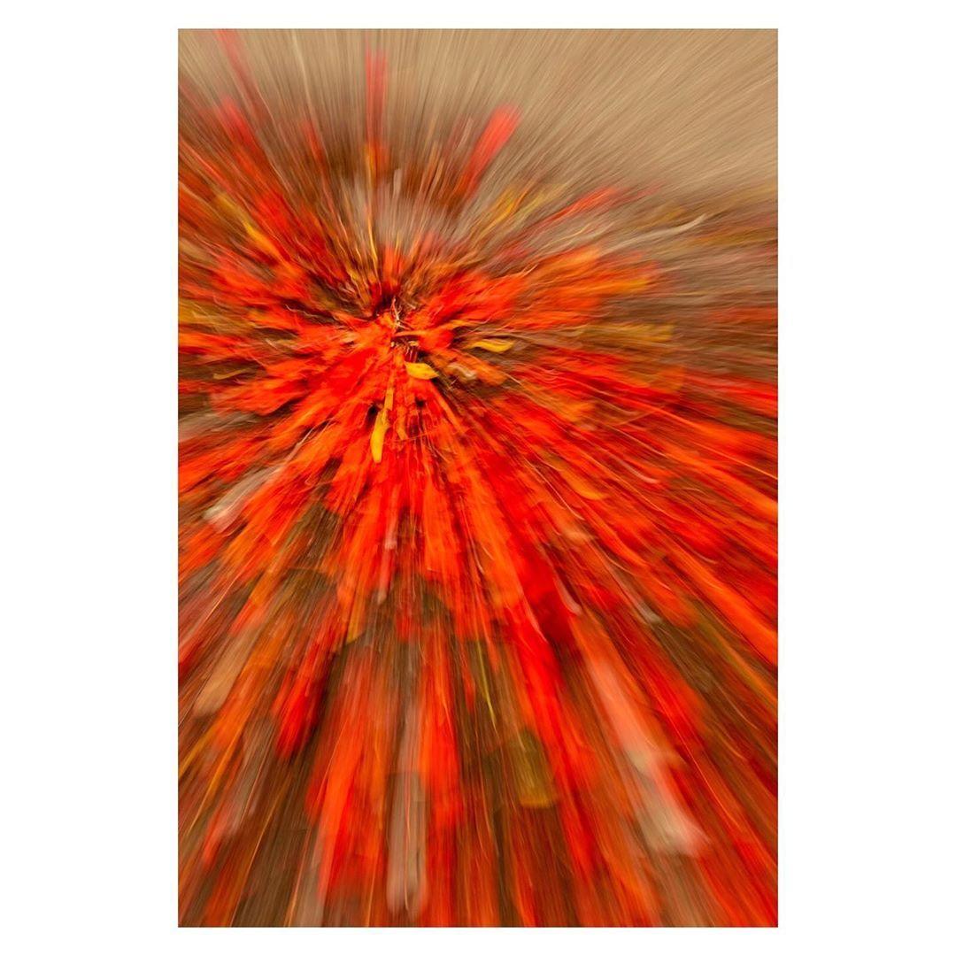 #photosdefemmes #womenphotographer #lapartdesfemmes #womenphotograph #womenphotographers  #broadmag #broadmagazine  #iconicartistmagazine #oneartmagazine #odtakeovers #apricotmagazine  #fineart #fineartphotography #littlerivermag #fineartphotographymag #ifyouleave  #nikon #nikond750  #artmagazine #contemporaryart #artwork #parallelplatform #contemporaryphotography #conceptualphotography  #creativeimagemagazine #burndiary #reppinkselects
