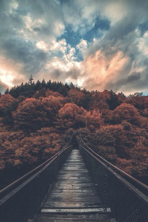 34 Autumn Photos To Inspire You To Grab Your Camera Landscape Photography Nature Photography Scenery