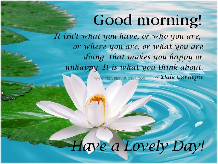 Good Morning Have A Lovely Day Quotes Archidev