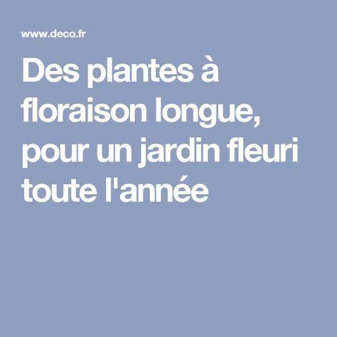 Des plantes à floraison longue, pour un jardin fleuri toute l ...