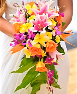 Cascading Tropical Bridal Bouquet With Yellow Plumeria And