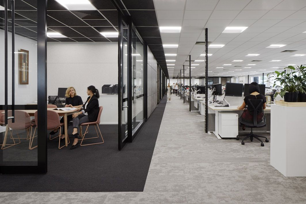 David Jones and Country Road Group Head Office by Gray