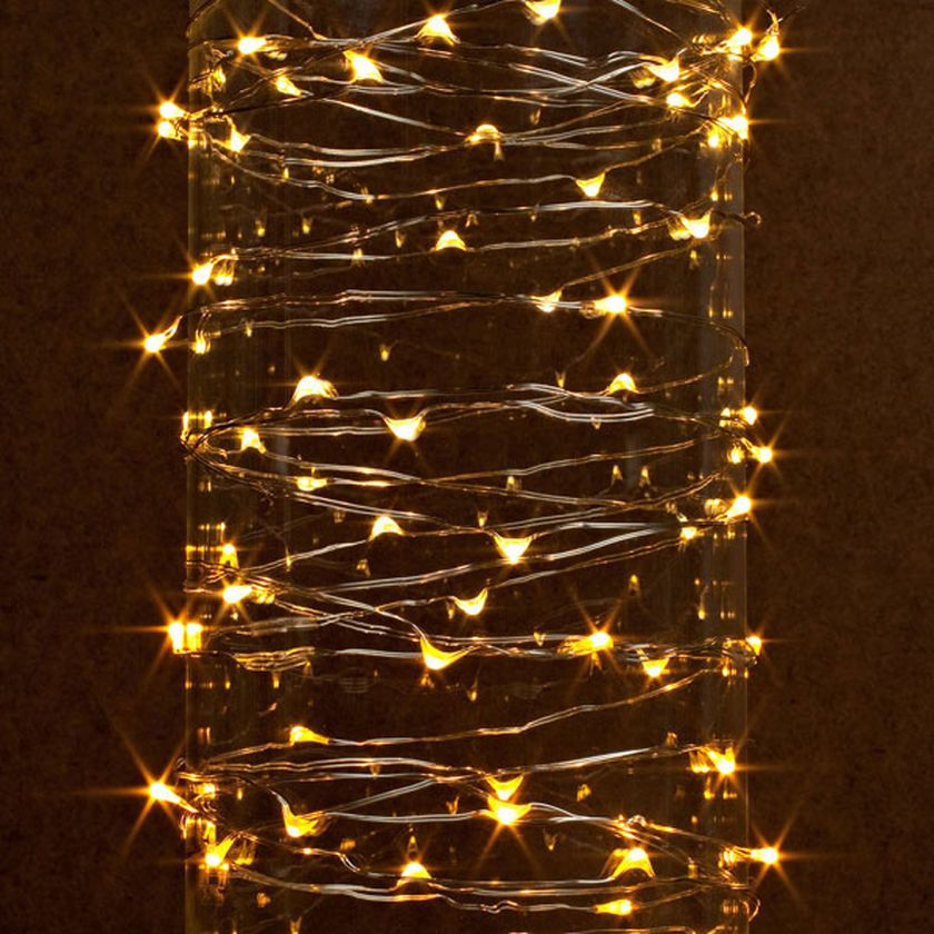 Outdoor led micro lights 20 christmas lights pinterest gerson 38624 60 light silver wire warm white battery operated outdoor led micro miniature christmas light string set with timer find out more about the aloadofball Gallery