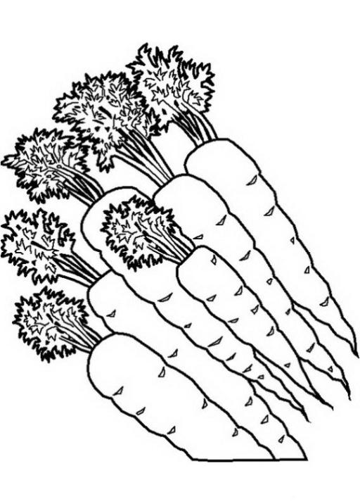 Malvorlagen Fur Obst Ausmalbilder Zum Ausdrucken Gratis Malvorlagen Obst Und Gemse 3 Warna Sayuran Gambar