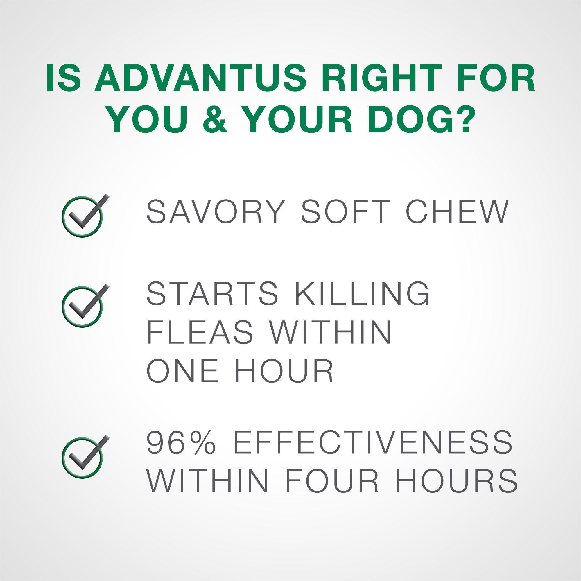 Advantus Flea Soft Chews For Small Dogs 4 22lbs 30 Count 30 Ct