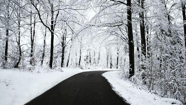 Winter road picture for desktop