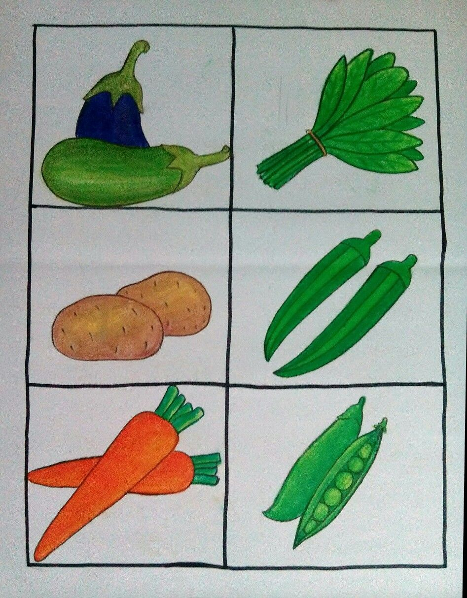 Vegetable Art Drawing