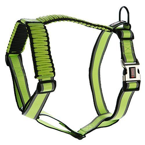 KONG Reflective Paracord Harness Lime Medium -- Unbelievable dog item right here! : Dog harness
