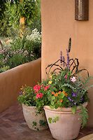 holt_920_086.jpg | PhotoBotanic Stock Photography Garden Library