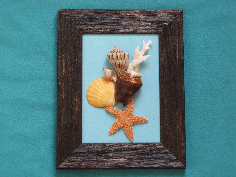 Framed seashell artwork the image kid