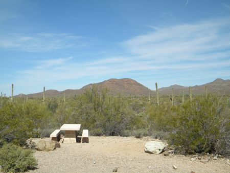 Gilbert Ray Campground - just outside Tucson.  one week maximum stay, but inexpensive and beautiful scenery.