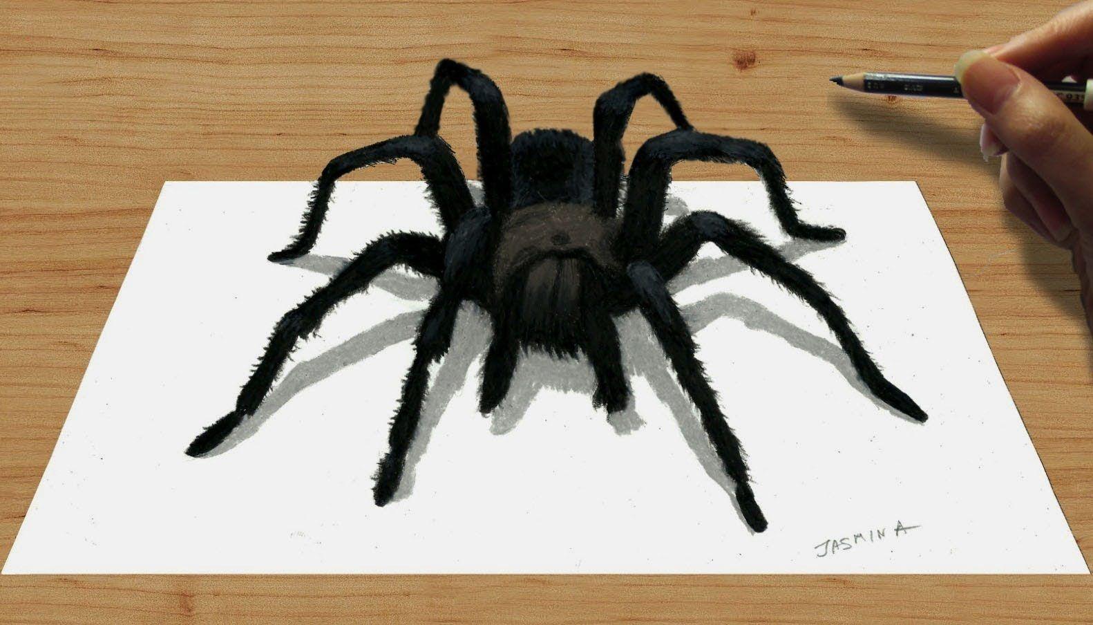 3D Pencil Drawing of a Black Spider | Jasmina Susak | 3D Art Speed ...
