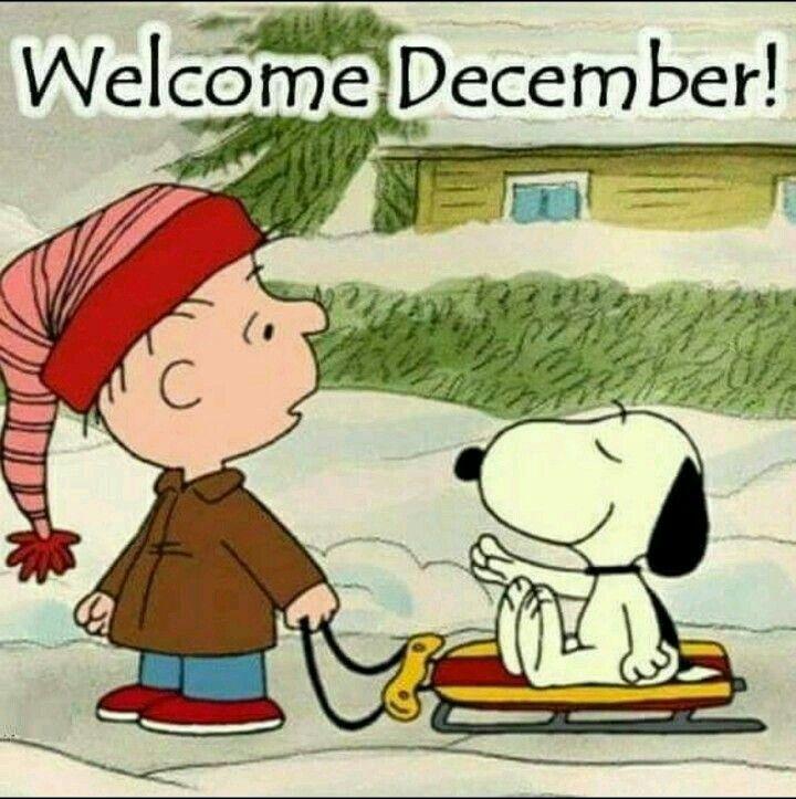 Snoopy & Charlie brown | inspiration | Pinterest | Snoopy, Fondos de ...