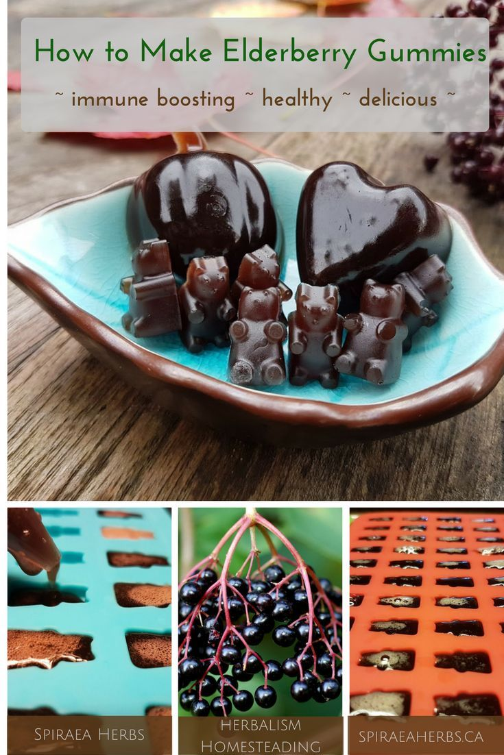 How to make elderberry gummies immune boosting healthy