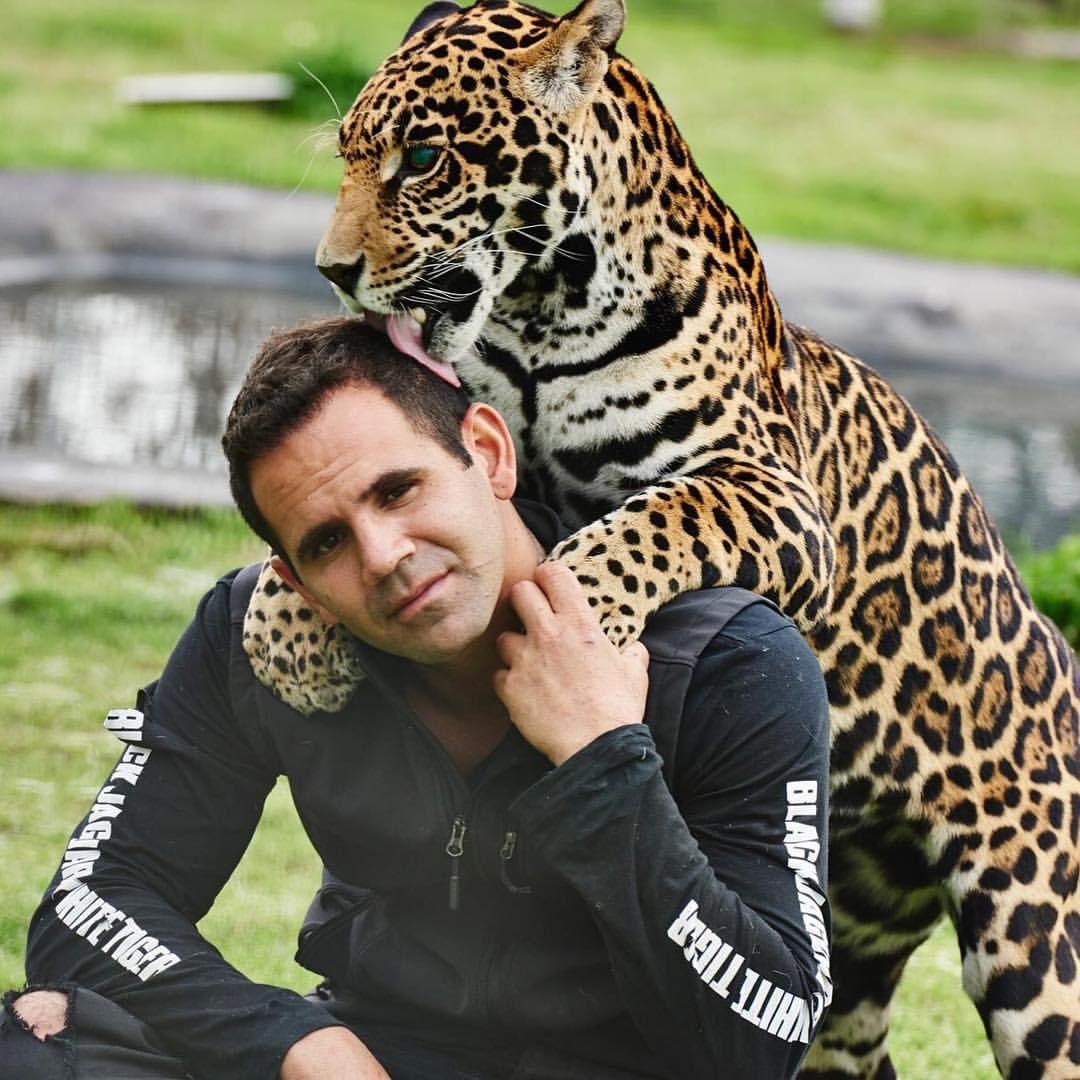 тигр и человек фото такой декор