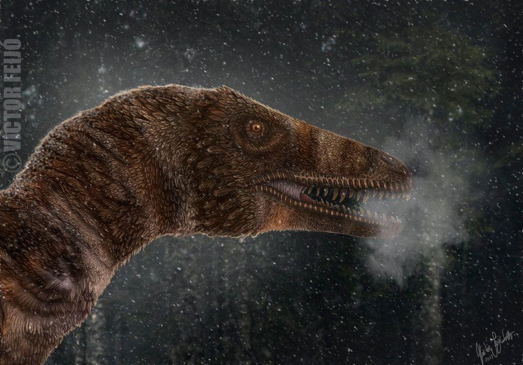Dakotaraptor por victorfeijo