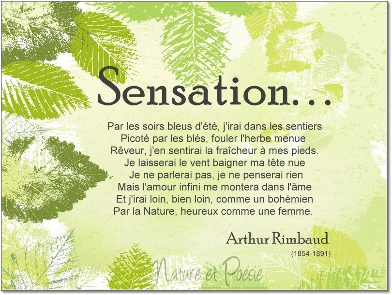 Sensation Arthur Rimbaud Rimbaud Poeme Citation Pensée