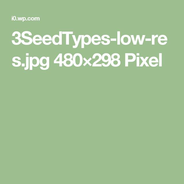 3SeedTypes-low-res.jpg 480×298 Pixel