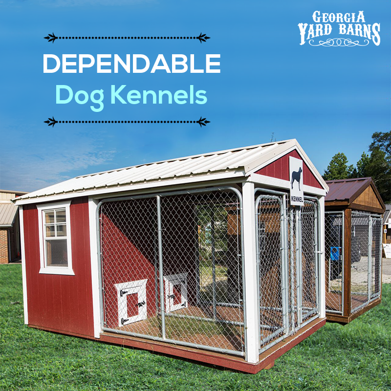 The best place to buy a portable dog kennel | Portable dog ...