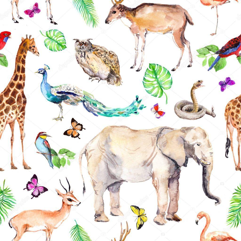 Wild Animals And Birds Zoo Wildlife Elephant Giraffe Deer Owl Parrot O Aff Zoo Wildlife Birds Wild Ad In 2020 Animals Wild Pet Birds Animals