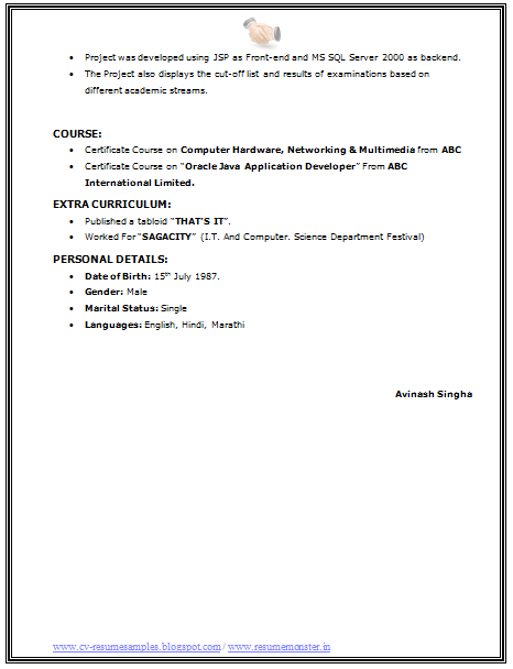 Bsc It Resume Format Page 4 Resume Format Resume Sample Resume