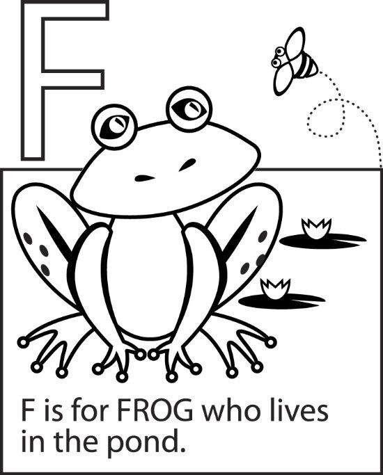 13 class frog coloring page is one of the pages listed - Printable Coloring Pages Frogs