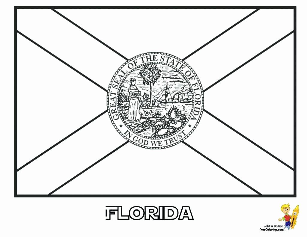 Colorado State Flag Coloring Page Luxury State Flags Coloring Page