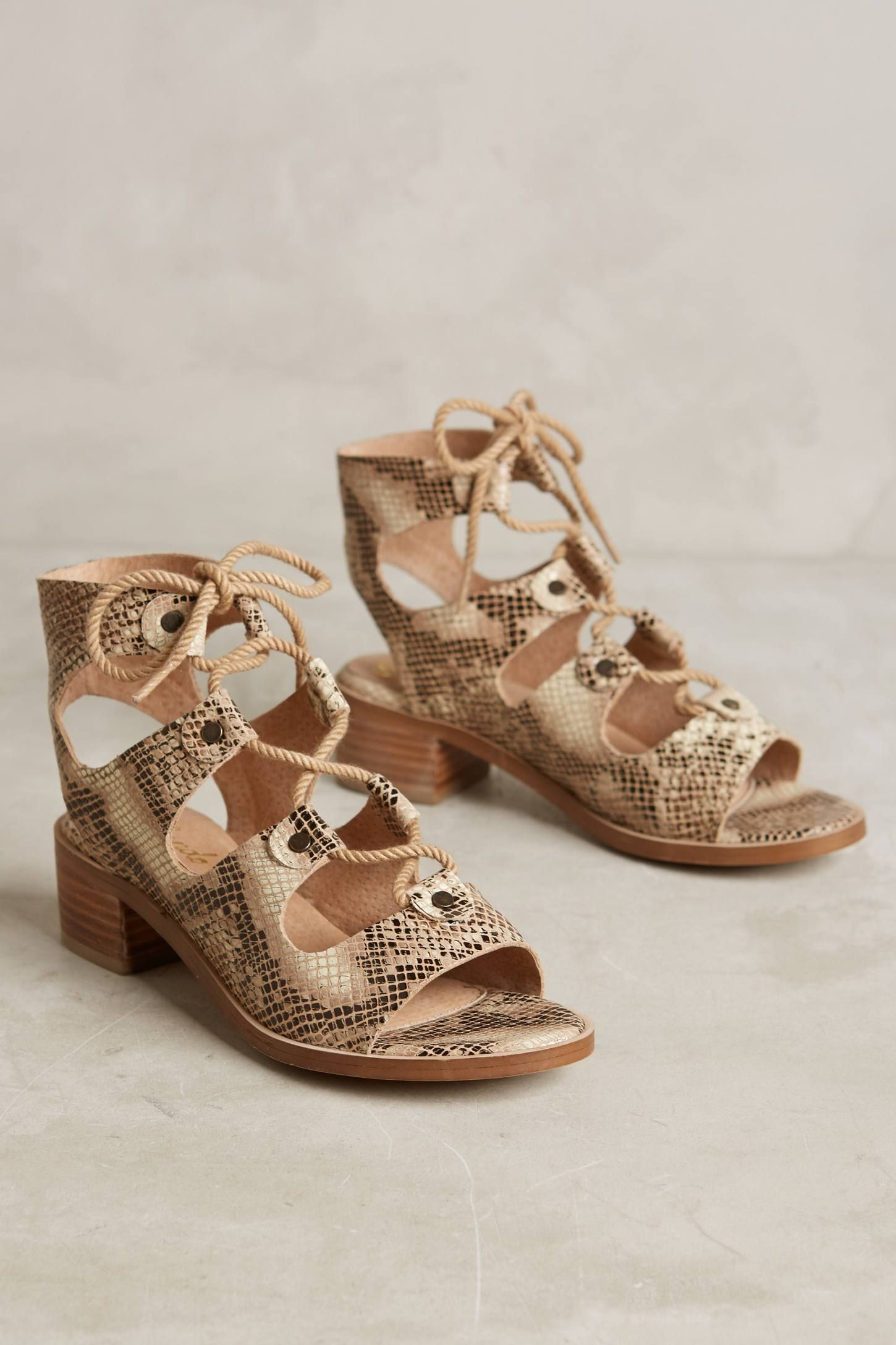 ddb2ab3fbd64 Liendo By Seychelles Marbella Lace-Up Sandals | personales | Lace up ...